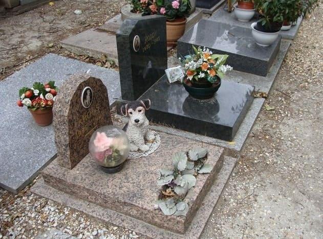 кладбище для домашних животных