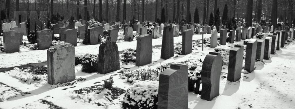 подготовить могилу к зиме